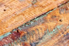 Старая выдержанная предпосылка макроса бирюзы grungy деревянная Стоковые Изображения RF
