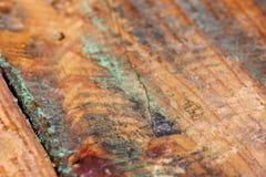 Старая выдержанная предпосылка макроса бирюзы grungy деревянная Стоковая Фотография RF