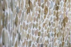Старая выдержанная стена с предпосылкой текстуры мха Стоковая Фотография