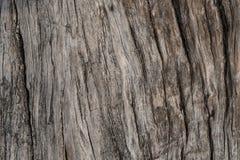 Старая выдержанная деревянная текстура, старая деревянная предпосылка, предпосылка текстуры Стоковое Изображение