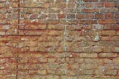 Старая выдержанная коричневая текстура предпосылки кирпичной стены Стоковое Фото