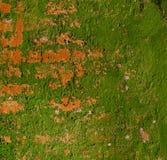 Старая выдержанная покрашенная стена Стоковые Фотографии RF
