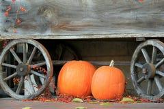 Старая выдержанная фура с 2 тыквами и scatter ягод Стоковое Изображение RF