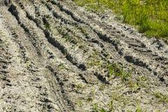 Старая грязная улица с много меток автошины в грязи стоковые изображения rf
