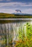 Старая главная гора Стоковая Фотография