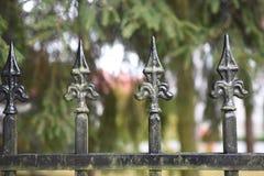 Старая декоративная предпосылка загородки в лесе yhe стоковое изображение