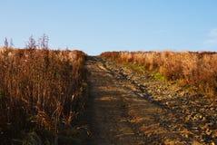 Старая деревенская дорога вверх в середине поля дикой травы стоковые изображения