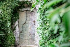 Старая деревянная дверь в утесе Стоковое фото RF