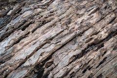 Старая деревянная деталь для предпосылки Стоковое Изображение RF