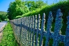 Старая деревянная загородка покрытая с лишайником Естественная текстура деревянной загородки с лишайником Естественная предпосылк стоковое фото rf