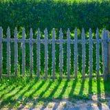 Старая деревянная загородка покрытая с лишайником Естественная текстура деревянной загородки с лишайником Естественная предпосылк стоковые фотографии rf