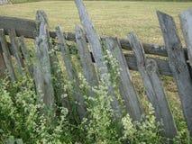 Старая деревянная загородка стоковые изображения