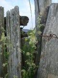 Старая деревянная загородка стоковое изображение