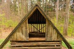 Старая деревянная лачуга все еще стоя в лесе стоковые фотографии rf