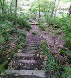 Старая деревянная лестница Пол покрытый с сором вдоль реки стоковое фото