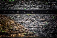 Старая деревянная текстура с естественными картинами и отказами на sur Стоковые Фото