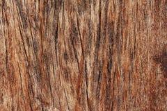 Старая деревянная текстура стоковые изображения