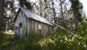 Старая дом в древесинах стоковое фото