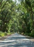 Старая дорога Стоковые Изображения