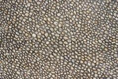 Старая дорога pebblestone мостить с белыми естественными камнями стоковые изображения