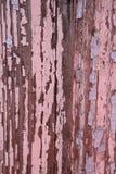 старая древесина краски Стоковая Фотография RF