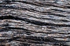 старая древесина стены Стоковое фото RF