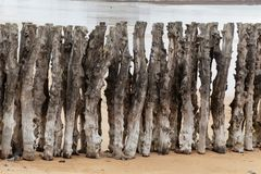 Старая древесина groyne Стоковое фото RF