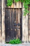 Старая деревянная дверь с винтажным замком металла и зелеными листьями одичалого Стоковые Изображения