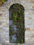 Старая деревянная дверь с каменной стеной и плющом Стоковое Фото