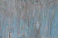 Старая деревянная доска при узлы покрашенные в сини Справочная информация Стоковые Фото
