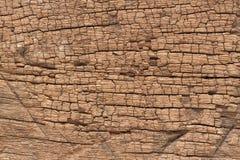 Старая деревянная предпосылка конспекта текстуры Стоковая Фотография
