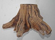Старая деревянная предпосылка пня текстуры Стоковые Изображения