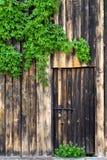 Старая деревянная стена с дверью, винтажным замком металла и зеленым цветом выходит o Стоковые Изображения