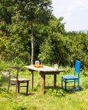 Старая деревянная таблица в саде Стоковое Изображение