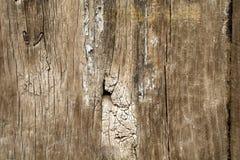 Старая деревянная текстура плиты Стоковая Фотография