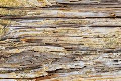 Старая деревянная текстура с естественной предпосылкой картин Стоковые Фотографии RF