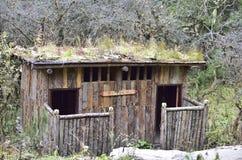 Старая деревянная уборная во дворе в древесинах стоковое фото rf