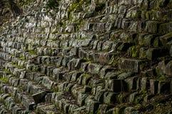 Старая лестница, Copan, Гондурас Стоковое Изображение RF