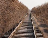 Старая железная дорога проходит среди Стоковое Фото