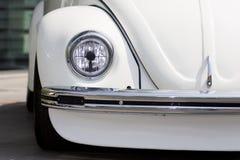 старая жука головная светлая Стоковое Изображение