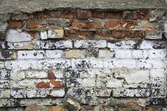 Старая загородка кирпича Загубленные стены backhander стоковые изображения