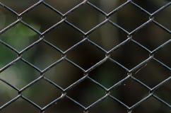 Старая загородка звена цепи Стоковая Фотография