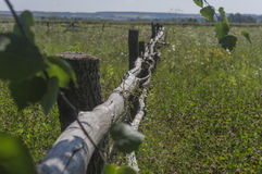 Старая загородка на луге лета Стоковое Фото