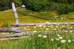 Старая загородка Стоковые Изображения