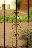 Старая заржаветая перерастанная загородка Стоковые Фото