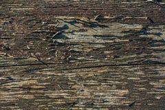 Старая затрапезная древообразная предпосылка Стоковое Изображение RF
