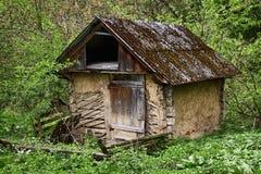 Старая землянка в зеленом лесе Стоковые Фотографии RF