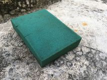 Старая зеленая губка Стоковая Фотография RF