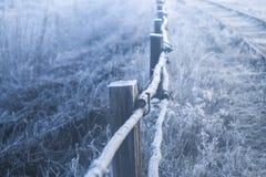 Старая изгородь в заморозке на морозном утре зимы стоковые фотографии rf
