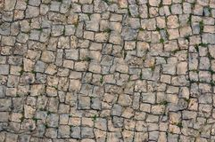 Старая изогнутая дорога с пусканной ростии травой r иллюстрация вектора